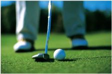 Play golf at many area golf courses
